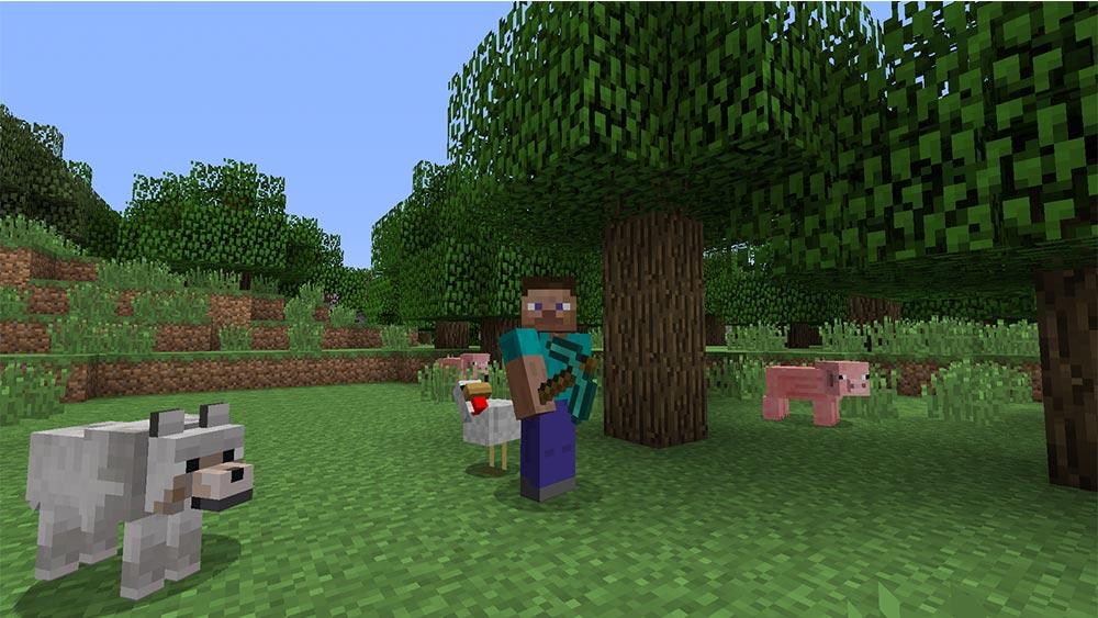 Schweinen können gezüchtet und geschlachtet werden, um wichtige Nahrung zu bekommen.